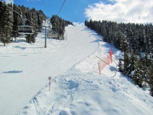Narty i snowboard w Val di Fiemme